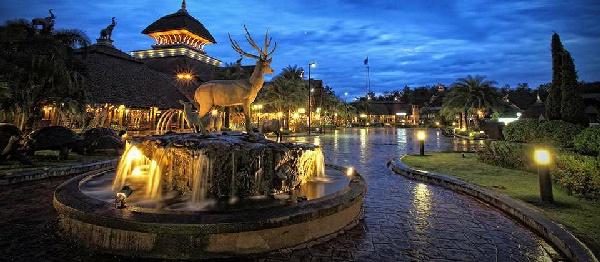 夜间野生动物园-night safari