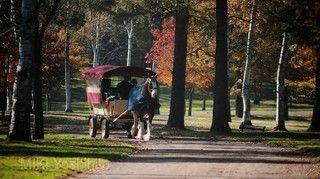 北方馬公園