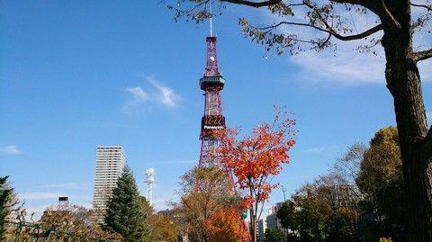 【悠遊北海道】札幌TMARK CITY飯店自由行5日(含早餐、贈5日WIFI)