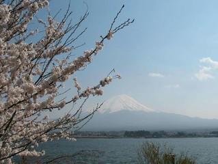 【國泰航空】東京迪士尼、卡奇卡奇山纜車、蘆之湖遊船、台場購物、富士溫泉五日