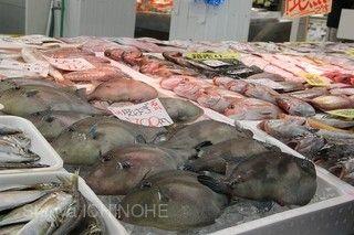 寺泊魚市場通