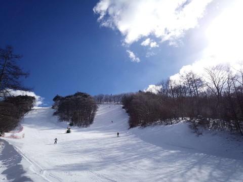 【東京探遊滑雪趣】魔法迪士尼、螃蟹花壽司、輕井澤Kids Park戲雪雙溫泉5日