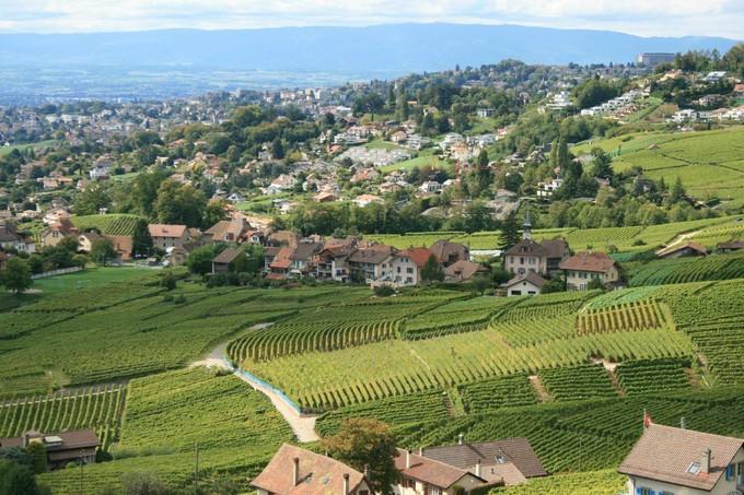《全程瑞士鐵道小壯遊》????冰河及黃金列車~生活在他方|瑞士有點自由沒那麼貴|冰河三千|拉沃葡萄梯田????半旅半行10日