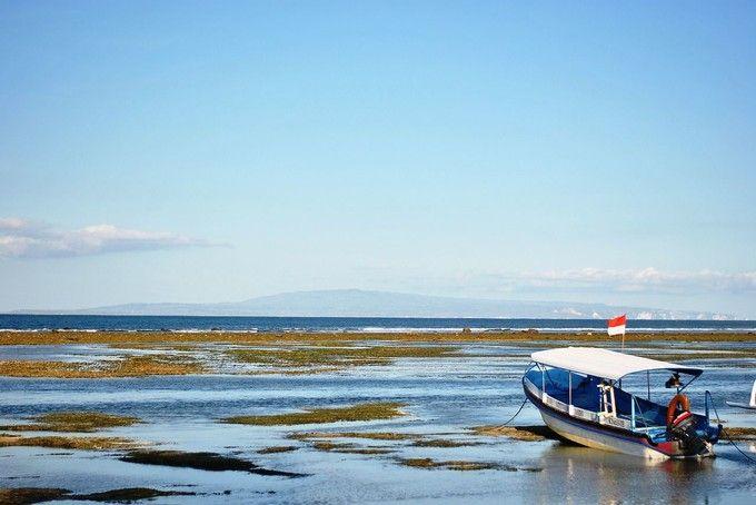 進擊的巴里島-海底漫步+摩托車+監獄、螃蟹龍蝦美食五日遊