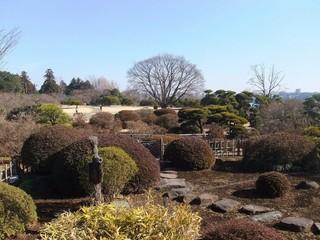 國泰東京海濱公園輕井澤溫泉五日遊(9月起)