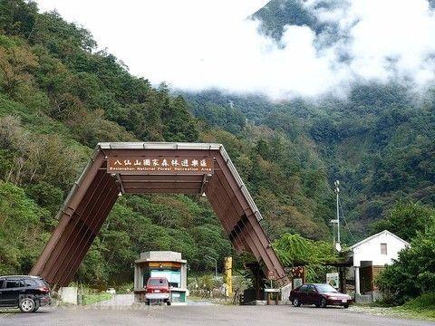 【天天出發-森林巴士】台灣必去八大景色之一~享受森林療癒.八仙山一日