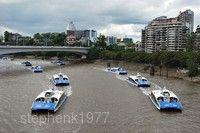 城市之貓渡船