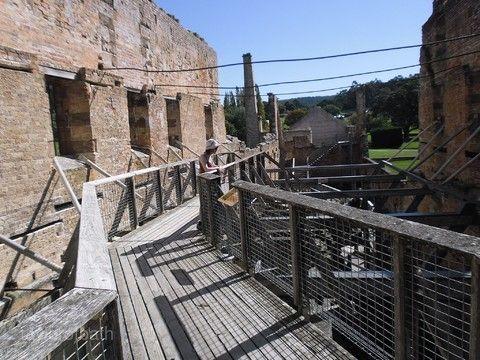 昆士蘭博物館