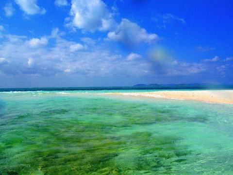 【帛琉大飯店】帛琉北島海陸暢遊、大斷層、海豚灣、牛奶湖、軟硬珊瑚礁5日