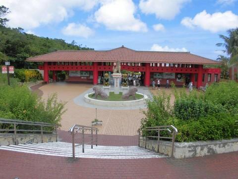 悠遊沖繩無購物輕鬆Go~恐龍森林‧美之海水族館.玉泉洞‧AEON夢樂城四日