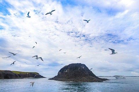 夏季旅展》澎湖親子遊.東海群島踏浪生態體驗.海洋牧場釣魚趣3日(台中出發)