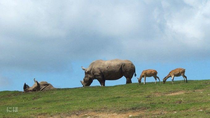 九州自然野生動物園