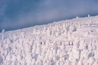 日本東北藏王樹冰+戲雪樂+溫泉美食4日-福福