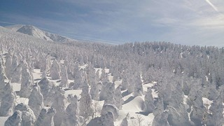 【主題旅遊】FUN_SKI滑雪趣-山形藏王.驚豔樹冰滑雪5日遊