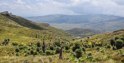 [KQ][非洲大聯盟]肯亞國家公園獵奇深度十日