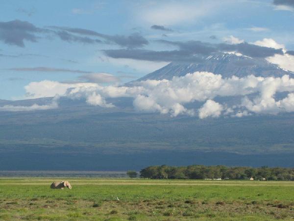 東非肯亞~動物奇觀‧四大國家公園獵遊10日<6人成行>