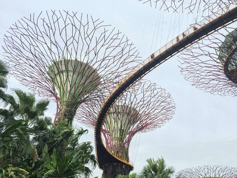 《10999含稅起》秋戀特選新加坡~牛車水、濱海灣花園、金沙娛樂城快閃三日(四星酒店)