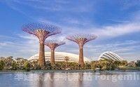 【無購物】花羨棕櫚新樂園馬新五日~ 黃金棕櫚、大紅花、環球影城五日