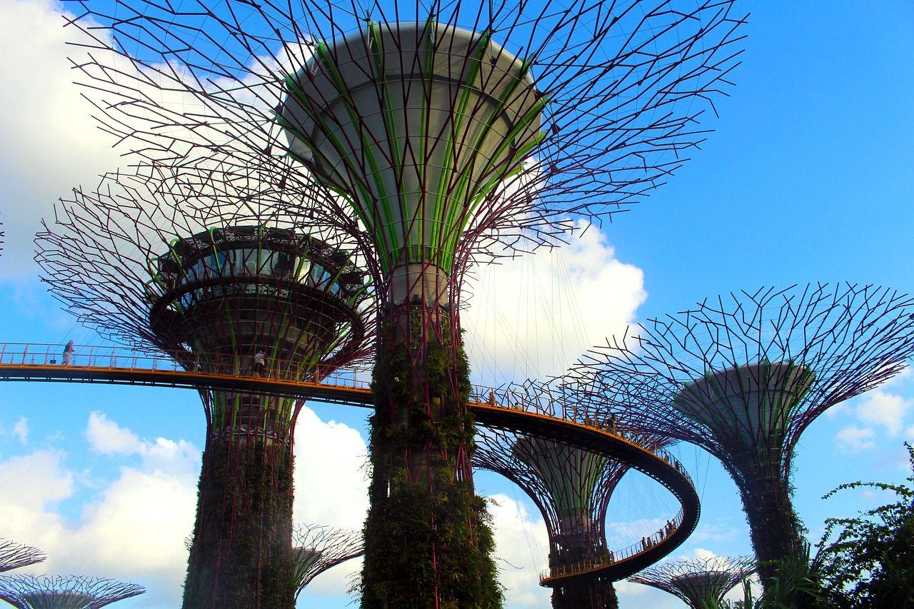 星光動物園~夜間動物園+環球影城+時光之翼水舞秀+金沙娛樂城新加坡四日