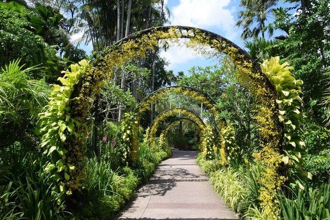 新加坡植物園