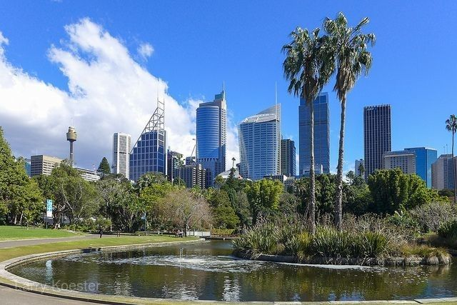 雪梨皇家植物園