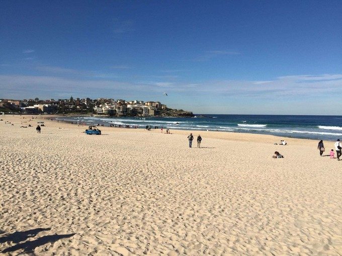 《住宿藍山吸收滿滿芬多精》雪梨藍山歌劇院‧塔隆加親子動物園‧英式雪梨大學‧浪漫渡輪超值7日