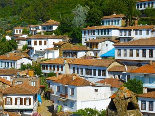 旅展折$3,000-超值直飛土耳其10日~特洛伊、惜林階、棉堡、岩城、伊斯坦堡、六晚五星飯店