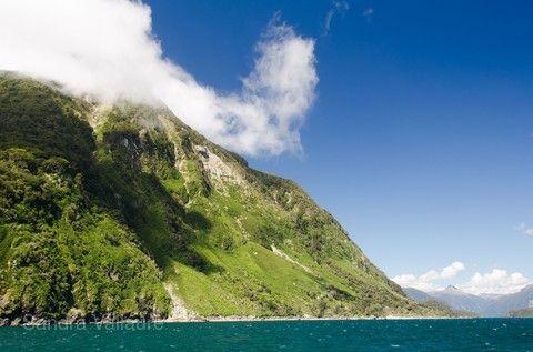 【主題旅遊】紐西蘭生態大師,火車峽灣,雙纜車,哈比屯,觀星夜遊,美食美酒漫步之旅12天