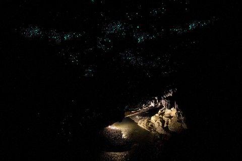 《金秋WIFI》尊爵彩粧紐西蘭南北島~高山火車.峽灣.冰河.生態.美景美食十天