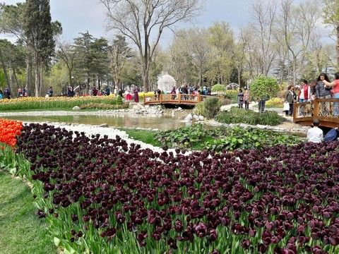 埃米爾甘公園