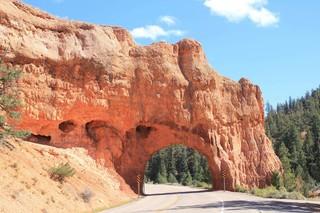 紅峽谷Red Canyon