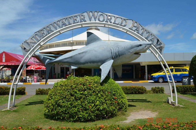 芭達雅海洋生物館