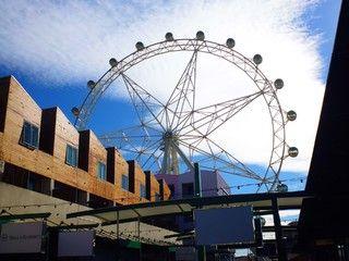 漫遊WIFI~雪墨雙都宴8日遊(含小費&雙城風味特色餐&咖啡弄&景觀摩天 (墨爾本進/雪梨出)