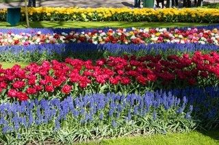 ◆魅力歐洲◆花現~荷比法8天【鬱金香花園、羅浮宮、凡爾賽宮、雙遊船、風車古城】