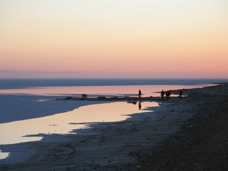 北非 突尼西亞撒哈拉沙漠星空帳篷旅館10天