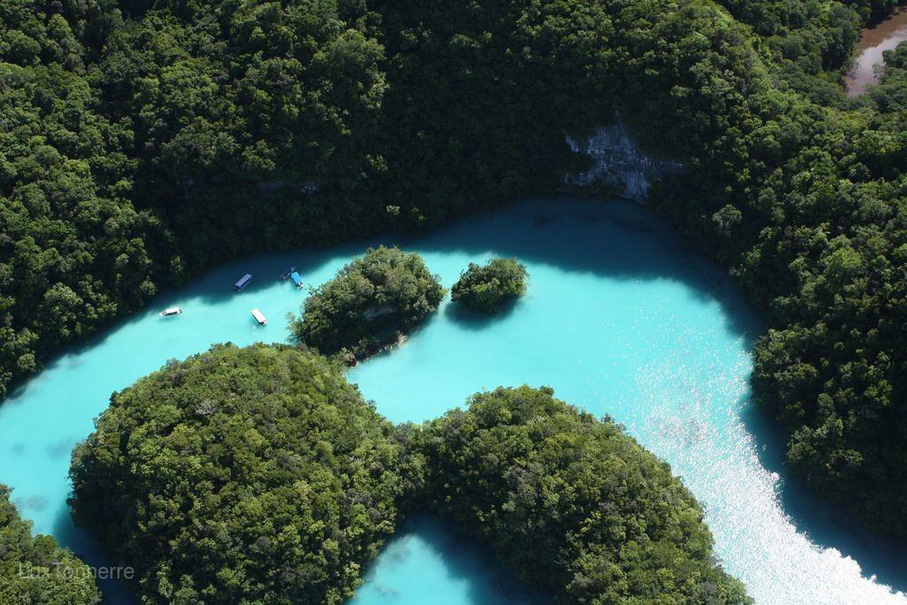 【就是愛帛琉5日-愛萊森林度假村】二次出海、水母湖、大斷層、牛奶湖、愛萊環礁奇景區、水上活動[含稅簽]