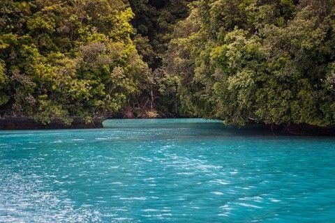 樂GO帛琉海世界4日