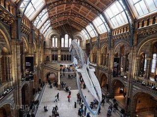 魅力歐洲~『Hello UK』倫敦眼、雙大學城、古羅馬浴池、史前巨石、時尚購物趴、英倫時尚7日