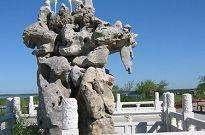 鹽城丹頂鶴保護區