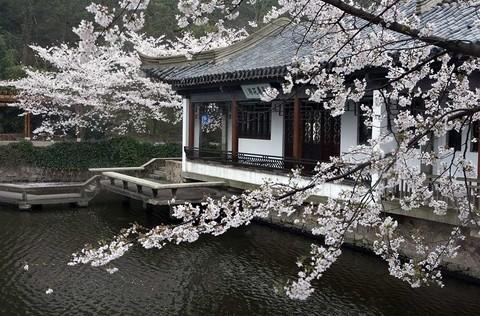 黿頭渚公園