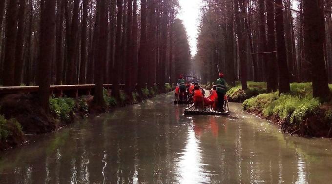李中水上森林景區