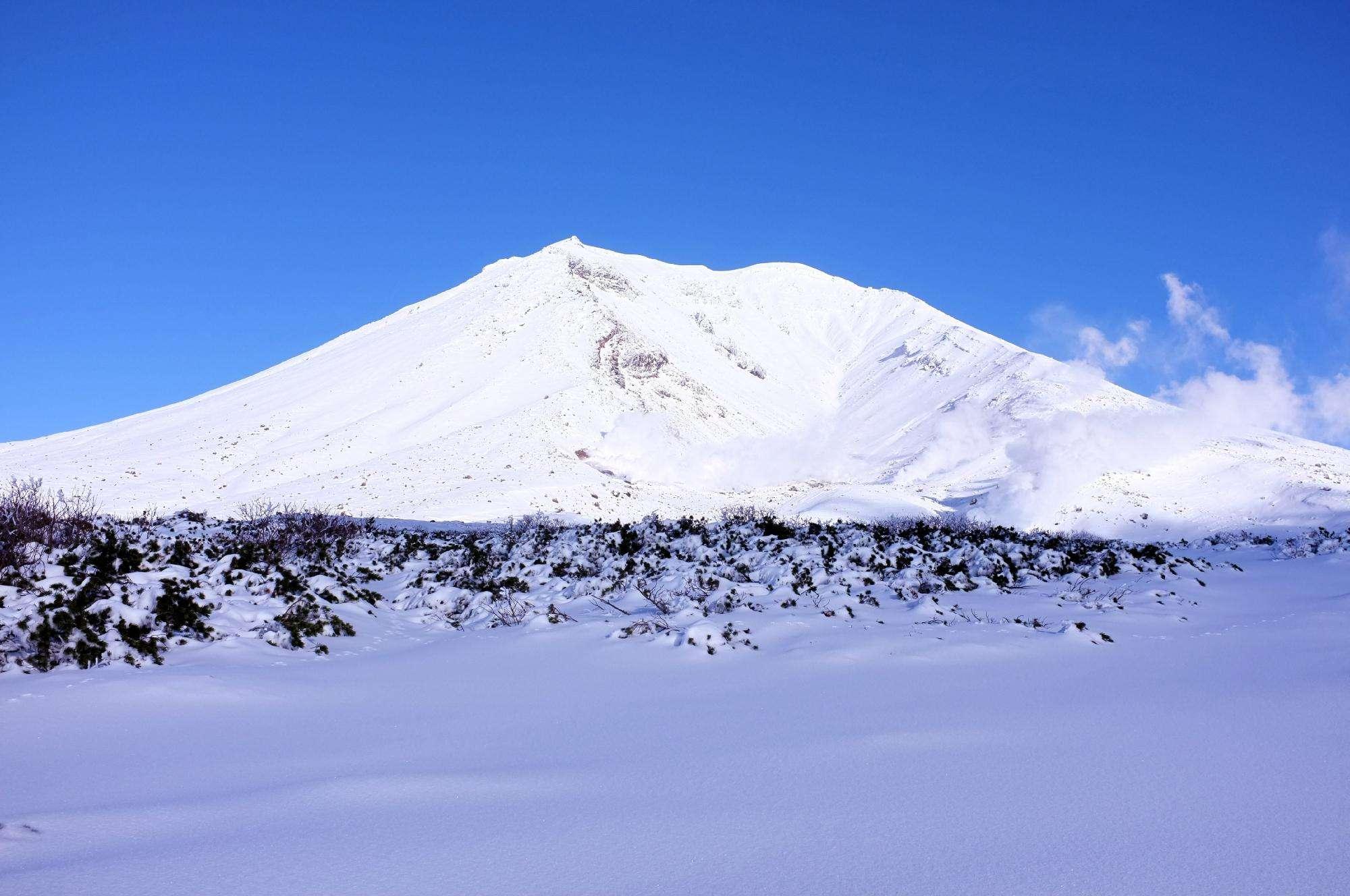 「釧路濕原國立公園」的圖片搜尋結果