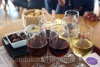 聖托里尼島葡萄酒莊園