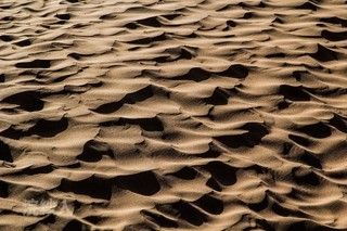 沙坡頭旅遊區