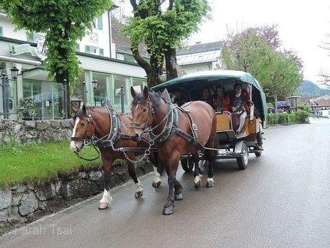 新天鵝堡馬車