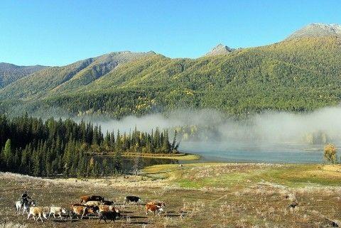 翠藍北疆、絕美喀納斯、禾木村、巴音布魯克、喀拉峻峽谷11日(升等喜來登