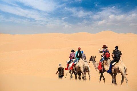 響沙灣沙漠活動