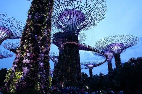 旗艦新加坡《兩晚五星》~環球影城+SEA海洋館 4日