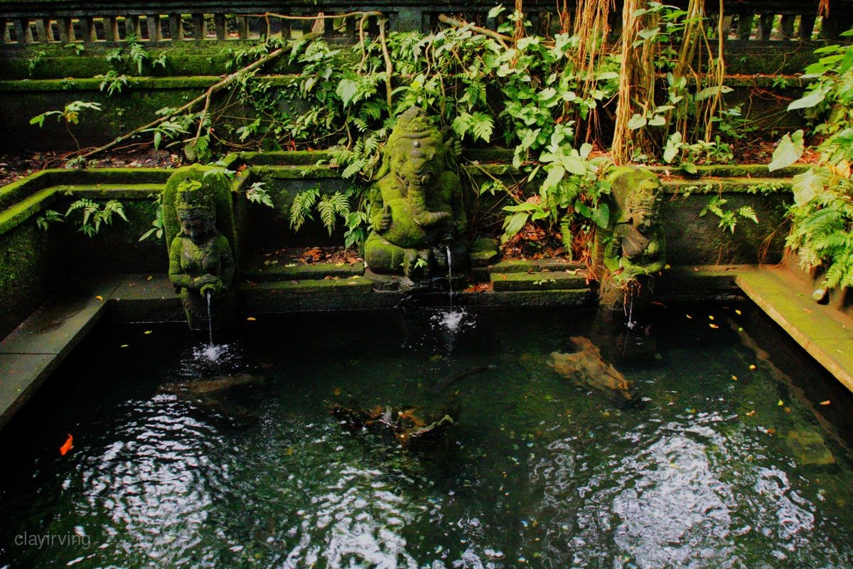 獨家4x4吉普車》特選親子嗨巴里~巴里島最大野生動物園、美人魚灣俱樂部、烏布一日遊、親子SPA5日(6人成行。含稅)