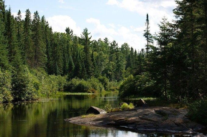 阿爾岡金省立公園